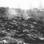 【1943年 ケ号作戦】ガダルカナル島からの3度に渡る撤退作戦。